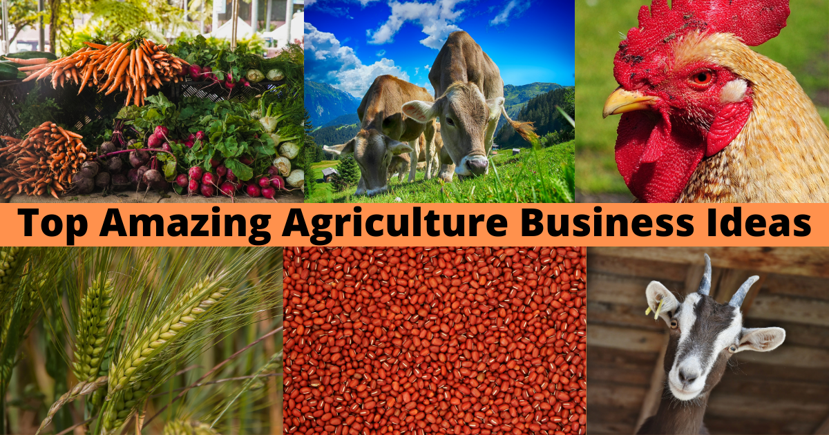 Top Agriculture Business Ideas